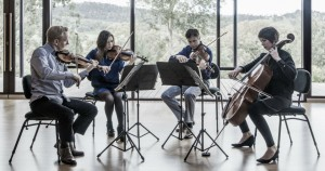 Aust String Quartet at Ngeringa Cultural Centre - Image by Jacqui Way - #AdCabFest - The Clothesline
