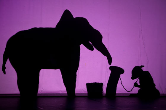 Shadowland Elephant  Dog - Emmanuel Donny - The Clothesline