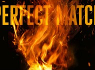 PERFECT MATCH by D.B. Thorne: On The Face Of It ~ Book Review