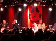 Radio Birdman: Still Doing It Their Way ~ Live Review