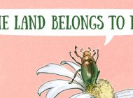 THE LAND BELONGS TO ME by Alys Jackson and Shane McGrath: Trouble Afoot On The Farm ~ Book Review